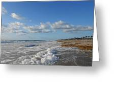 Sea And Sky Greeting Card by Sheila Silverstein
