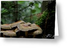 Sea Of Heads Greeting Card by Odd Jeppesen