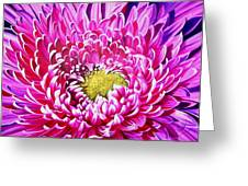 Sea Of Petals Greeting Card by Karen Casciani