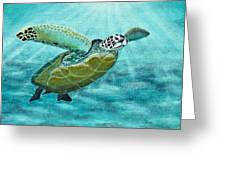 Sea Turtle Greeting Card by Richard Roselli