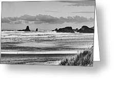 Seaside By The Ocean Greeting Card by James Heckt