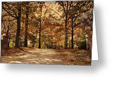 Secluded Entrance Greeting Card by Jai Johnson