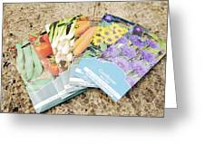 Seed Packs Greeting Card by Johnny Greig