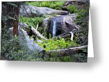 Sequoia Waterfall Greeting Card by Anthony Citro