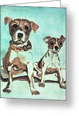 Shadow Dogs Greeting Card by Terry Lewey