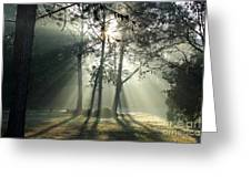 Shadows And Fog Greeting Card by Theresa Willingham