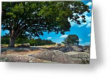 Shady Hilltop Greeting Card by Paul W Faust -  Impressions of Light