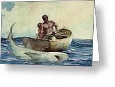 Shark Fishing Greeting Card by Winslow Homer