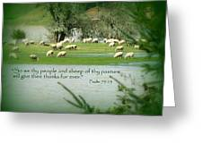 Sheep Grazing Scripture Greeting Card by Cindy Wright