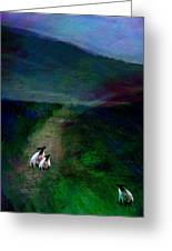 Sheep On The Moor Greeting Card by Jean Moore