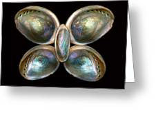 Shell - Conchology - Devine Pearlescence Greeting Card by Mike Savad