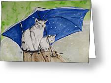 Shelter Greeting Card by Carol Blackhurst