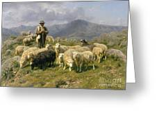 Shepherd Of The Pyrenees Greeting Card by Rosa Bonheur