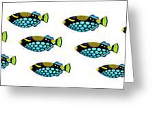 Shoal Of Clown Triggerfish  Greeting Card by Opas Chotiphantawanon