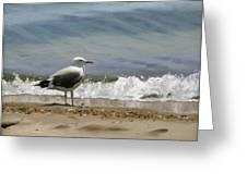 Shoreline Breeze Greeting Card by Linda Tenukas