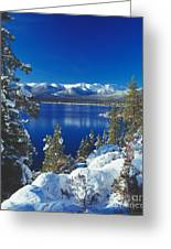 Shoreline East Shore Greeting Card by Vance Fox