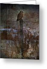 Short Eared Owl Greeting Card by Jerry Cordeiro