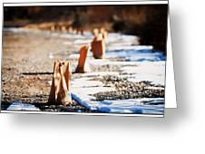 Side Road Luminaries Greeting Card by Lisa  Spencer