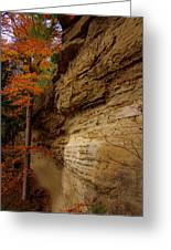 Side Winder Greeting Card by Ed Smith