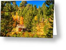 Sierra Nevada Rustic Americana Barn With Aspen Fall Color Greeting Card by Scott McGuire