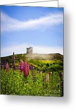 Signal Hill In St. John's Newfoundland Greeting Card by Elena Elisseeva