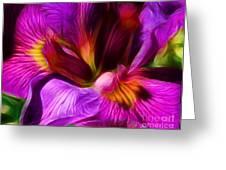 Silk And Satin Greeting Card by Judi Bagwell