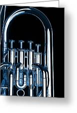 Silver Bass Tuba Euphonium On Black Greeting Card by M K  Miller