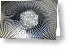 Silver Nova Greeting Card by Michael Durst