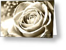 Simple Greeting Card by Cheryl Young