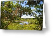 Sink Hole Lake Greeting Card by Luis Lugo