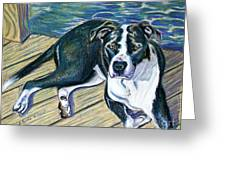 Sittin' on the Dock Greeting Card by D Renee Wilson