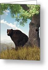 Sitting Bear Greeting Card by Daniel Eskridge