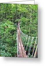 Sky Bridge 2 Greeting Card by Aimee L Maher Photography and Art Visit ALMGallerydotcom