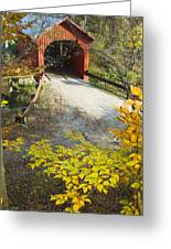 Slaughter House Bridge And Fall Colors Greeting Card by James Forte