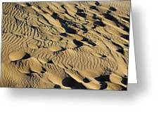 Sleeping Bear Dunes Sand Greeting Card by Twenty Two North Photography