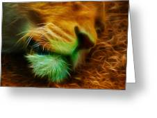 Sleeping Lion 2 Greeting Card by Chris Thaxter