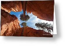 Slot Canyon Greeting Card by Greg Dimijian