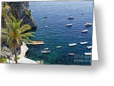 Small Boats And A Palm Tree Greeting Card by George Oze