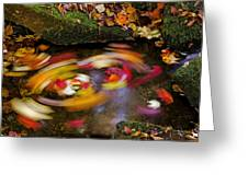Smoky Mountain Whirlpool Greeting Card by Rich Franco