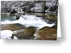 Snow Along The Back Fork Of Elk River Greeting Card by Thomas R Fletcher