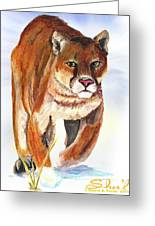 Snow Cougar Greeting Card by Sherril Porter