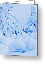 Snow-covered To Vallee Des Fantomes Greeting Card by Yves Marcoux