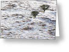 Snow On Moorland Greeting Card by Adrian Bicker