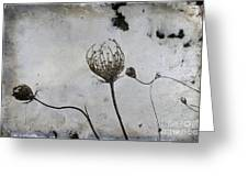 Snow Seeds Greeting Card by Paul Grand