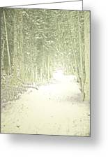 Snowy Lane Greeting Card by Andrea Hazel Ihlefeld