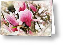 Snowy Magnoila Mist  Greeting Card by Andee Design