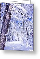 Snowy Path Greeting Card by Rob Travis