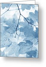Softness Of Blue Leaves Greeting Card by Jennie Marie Schell