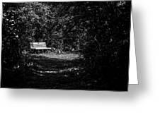 Solitude Greeting Card by CJ Schmit