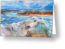 Speckled Trout Greeting Card by Jenn Cunningham